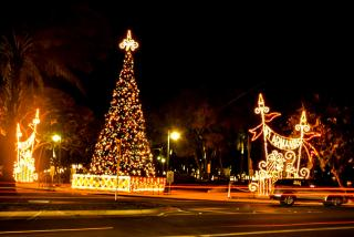 St. Armands' Holiday Light. Photo by Eddie Kirsch.