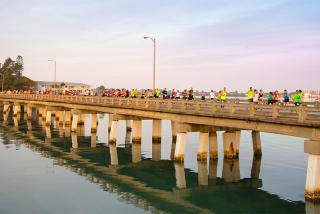The First Watch Sarasota Half Marathon & Relay. Photo courtesy of The First Watch Sarasota Half Marathon & Relay