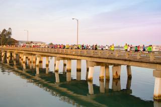 The First Watch Sarasota Half Marathon & Relay. Photo courtesy of The First Watch Sarasota Half Marathon & Relay