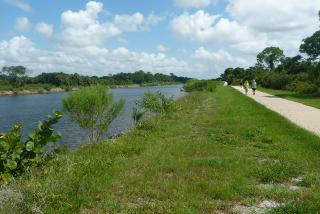 Walking trail at Shamrock Park Nature Center in Venice. Photo credit: Lucy Beebe Tobias